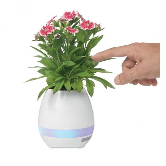 Magic flowerpot